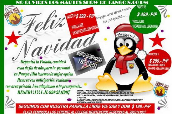 Navidad argentina Pampa Mia
